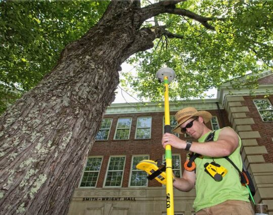 Arborist Consultations-Montgomery Tree Trimming and Stump Grinding Services-We Offer Tree Trimming Services, Tree Removal, Tree Pruning, Tree Cutting, Residential and Commercial Tree Trimming Services, Storm Damage, Emergency Tree Removal, Land Clearing, Tree Companies, Tree Care Service, Stump Grinding, and we're the Best Tree Trimming Company Near You Guaranteed!