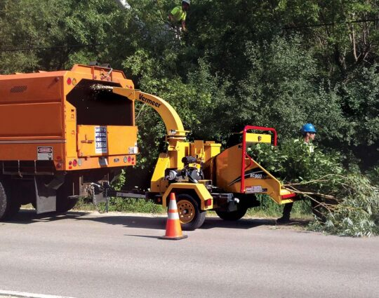 Commercial Tree Services-Montgomery Tree Trimming and Stump Grinding Services-We Offer Tree Trimming Services, Tree Removal, Tree Pruning, Tree Cutting, Residential and Commercial Tree Trimming Services, Storm Damage, Emergency Tree Removal, Land Clearing, Tree Companies, Tree Care Service, Stump Grinding, and we're the Best Tree Trimming Company Near You Guaranteed!
