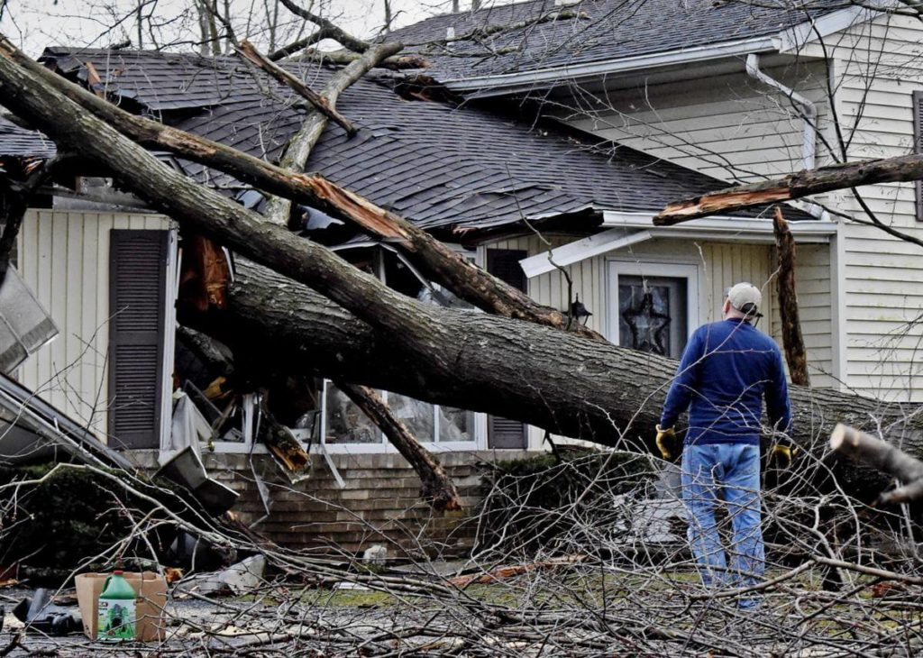 Storm Damage-Montgomery Tree Trimming and Stump Grinding Services-We Offer Tree Trimming Services, Tree Removal, Tree Pruning, Tree Cutting, Residential and Commercial Tree Trimming Services, Storm Damage, Emergency Tree Removal, Land Clearing, Tree Companies, Tree Care Service, Stump Grinding, and we're the Best Tree Trimming Company Near You Guaranteed!